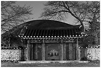 Royal tomb of King Michu of Silla by night. Gyeongju, South Korea ( black and white)