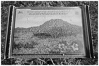 Frosted sign depicting spring landscape, Hallasan. Jeju Island, South Korea (black and white)