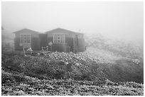 Witseoreum shelter in fog, Mount Halla. Jeju Island, South Korea (black and white)