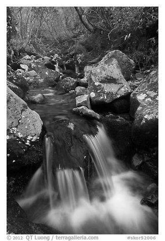 Cascading stream, Hallasan National Park. Jeju Island, South Korea (black and white)