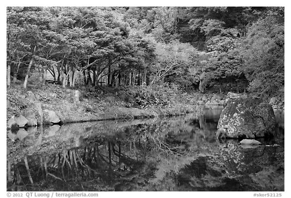 Reflections near Cheongjiyeon Pokpo, Seogwipo. Jeju Island, South Korea (black and white)