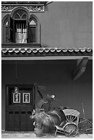 Window, door, and trishaw, Cheong Fatt Tze Mansion. George Town, Penang, Malaysia ( black and white)