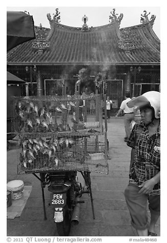 Motorcycle loaded with cage of birds (to be freed) in front of temple. George Town, Penang, Malaysia (black and white)
