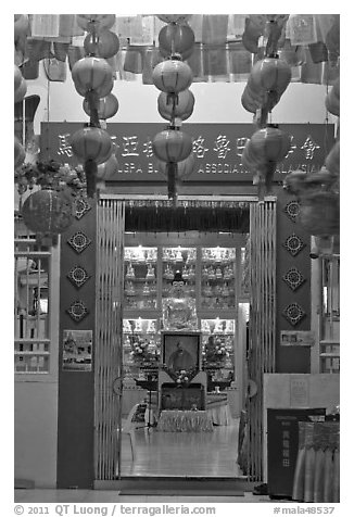 Penang Gelugpa Buddhist Association temple. George Town, Penang, Malaysia (black and white)
