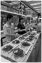 Chinese medicine herbs being packed on counter. Kuala Lumpur, Malaysia ( black and white)
