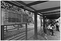 Bus stop with displays with expected wait time. Singapore ( black and white)