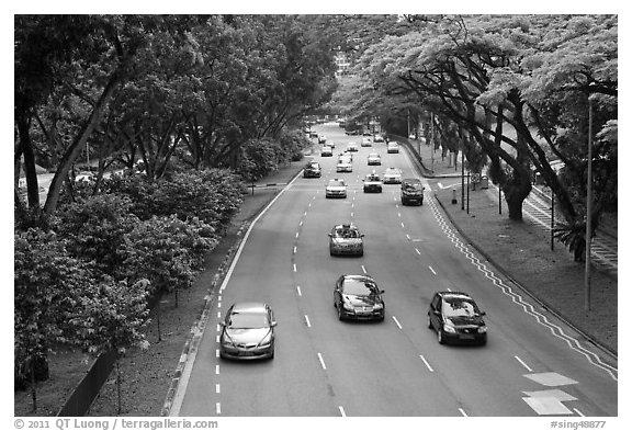 Expressway bordered by trees. Singapore (black and white)