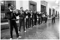 Band of mariachi musicians at night, Tlaquepaque. Jalisco, Mexico (black and white)