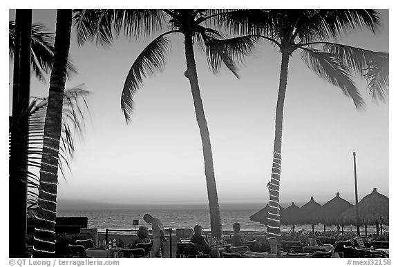 Outdoor dining under palm trees at sunset, Nuevo Vallarta, Nayarit. Jalisco, Mexico (black and white)