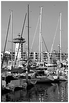 Yatchs in Marina Vallarta, Puerto Vallarta, Jalisco. Jalisco, Mexico ( black and white)