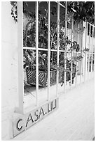 Window of home with plant and ceramic name plate, Puerto Vallarta, Jalisco. Jalisco, Mexico (black and white)