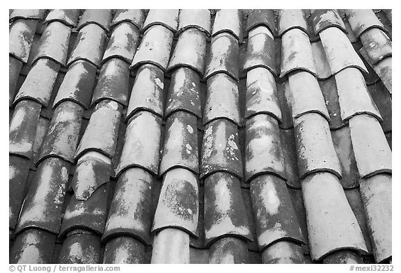 Detail of red tiled roof, Puerto Vallarta, Jalisco. Jalisco, Mexico (black and white)