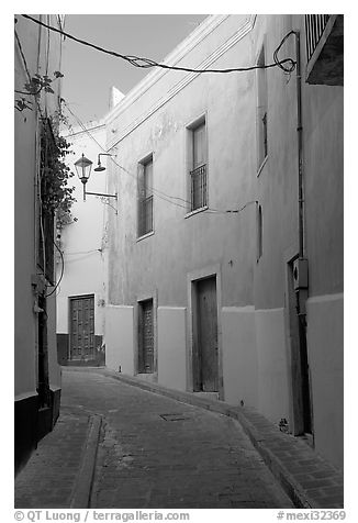 Narrow street with green houses. Guanajuato, Mexico (black and white)