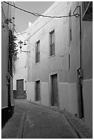 Narrow street with green houses. Guanajuato, Mexico ( black and white)