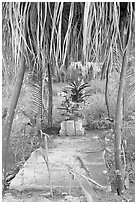 Tropical tomb in a cemetery. Mexico (black and white)