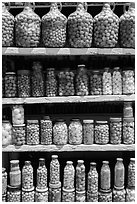 Jars of preserved pickles. Baja California, Mexico (black and white)