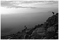 Ibex on the rim of Wadi Ruman (Maktesh Ramon) Crater, sunrise. Negev Desert, Israel (black and white)