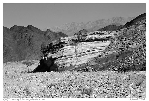 Cliff and mountains. Negev Desert, Israel (black and white)