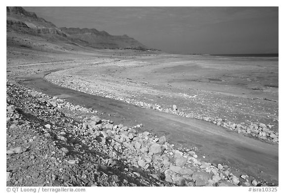 Shores of the Dead Sea. Israel (black and white)
