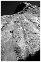 Jugging back to Sickle. Only 34 pitches to go !. El Capitan, Yosemite, California (black and white)