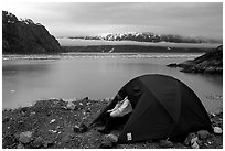 Camp on an outcrop overlooking the East Arm. Glacier Bay National Park, Alaska (black and white)