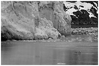 Kayaker dwarfed by the front of Lamplugh Glacier. Glacier Bay National Park, Alaska (black and white)