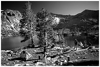 Camping near Woods Lake. Kings Canyon National Park, California (black and white)