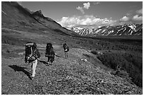 Backpackers with big  packs walking on the tundra. Lake Clark National Park, Alaska (black and white)