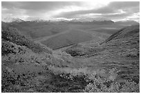 Tundra, braided rivers, Alaska Range at Polychrome Pass. Denali National Park, Alaska, USA. (black and white)