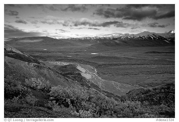 Tundra, braided rivers, Alaska Range in the evening from Polychrome Pass. Denali National Park (black and white)
