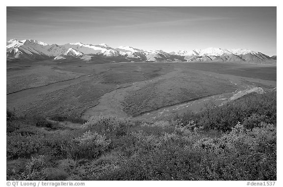 Tundra, braided rivers, Alaska Range at sunrise from Polychrome Pass. Denali National Park (black and white)