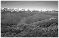 Tundra, braided rivers, Alaska Range at sunrise from Polychrome Pass. Denali National Park, Alaska, USA. (black and white)