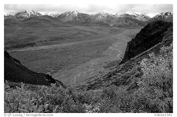 Tundra, wide valley with rivers, Alaska Range in the evening from Polychrome Pass. Denali National Park (black and white)
