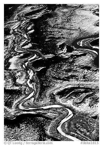 Frozen braided rivers. Denali National Park (black and white)