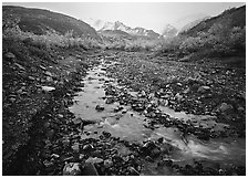 Creek near Polychrome Pass. Denali  National Park ( black and white)