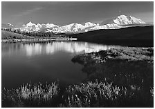 Mt Mc Kinley above Wonder Lake, evening. Denali  National Park ( black and white)