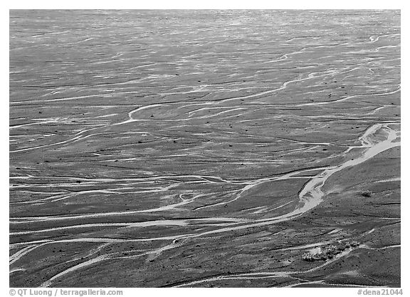 Braids of the  McKinley River on sand bar near Eielson. Denali  National Park (black and white)