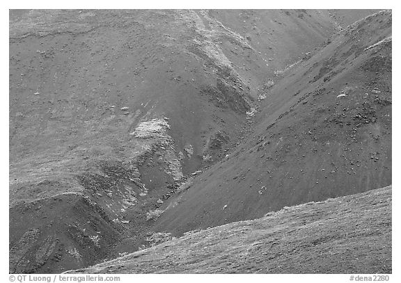 Foothills covered with tundra near Eielson. Denali National Park (black and white)
