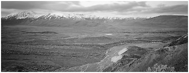 Wide mountain valley with braided river. Denali National Park (Panoramic black and white)
