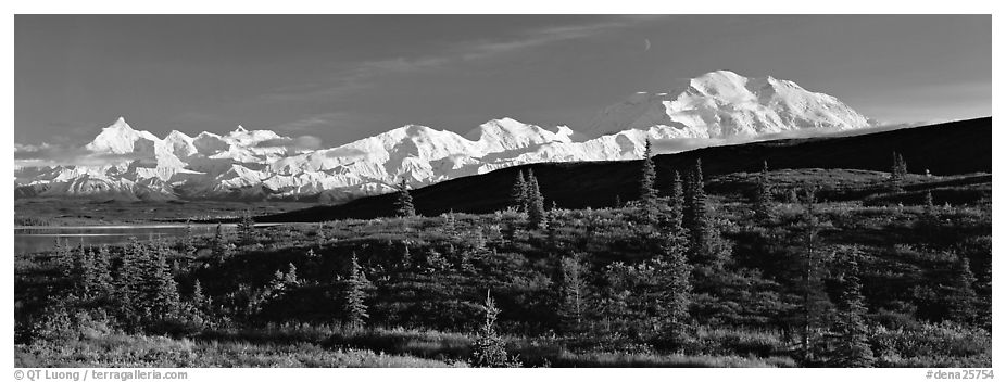 Tundra landscape with Mount McKinley. Denali National Park (black and white)