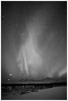 Aurora above Mt McKinley, winter. Denali National Park, Alaska, USA. (black and white)