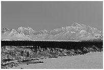 Denali and Mt Hunter at dawn in winter. Denali National Park, Alaska, USA. (black and white)