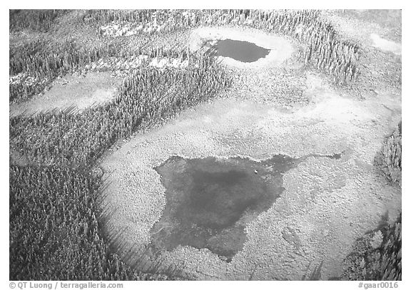 Aerial view of lake, tundra and taiga. Gates of the Arctic National Park (black and white)