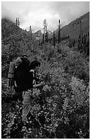 Backpacker in Arrigetch Creek. Gates of the Arctic National Park, Alaska (black and white)