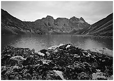 Dark rock and moss, Aquarius Lake. Gates of the Arctic National Park, Alaska, USA. (black and white)