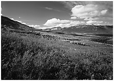 Alatna River valley. Gates of the Arctic National Park ( black and white)