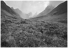 Tundra and Arrigetch Peaks. Gates of the Arctic National Park ( black and white)