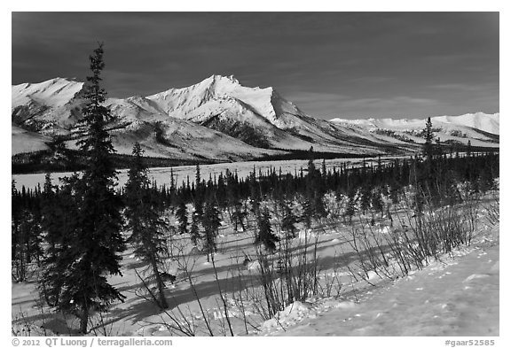 Winter landscape. Gates of the Arctic National Park (black and white)