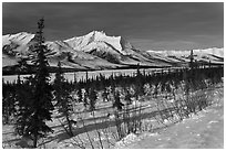 Winter landscape. Gates of the Arctic National Park, Alaska, USA. (black and white)