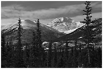 Boreal forest and snowy Brooks Range. Gates of the Arctic National Park ( black and white)